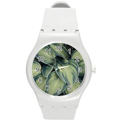 Closeup Photo Of Green Variegated Leaf Plants Round Plastic Sport Watch (m) by Pakrebo