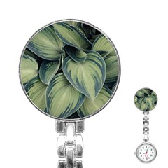Closeup Photo Of Green Variegated Leaf Plants Stainless Steel Nurses Watch by Pakrebo