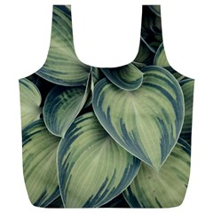 Closeup Photo Of Green Variegated Leaf Plants Full Print Recycle Bag (xl) by Pakrebo