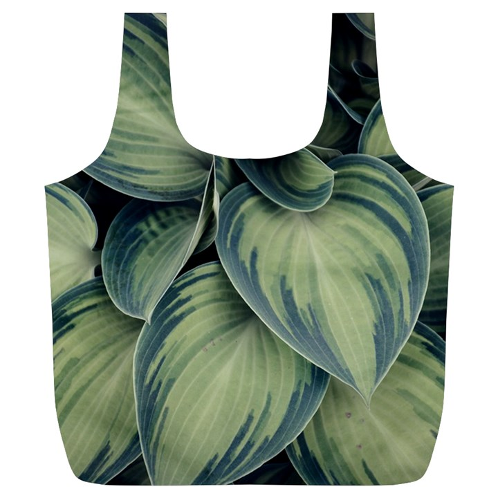 Closeup Photo Of Green Variegated Leaf Plants Full Print Recycle Bag (XL)