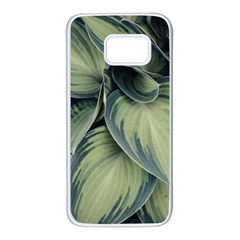 Closeup Photo Of Green Variegated Leaf Plants Samsung Galaxy S7 White Seamless Case