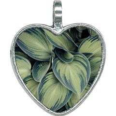 Closeup Photo Of Green Variegated Leaf Plants Heart Necklace by Pakrebo