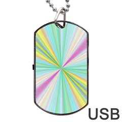 Background Burst Abstract Color Dog Tag Usb Flash (two Sides)