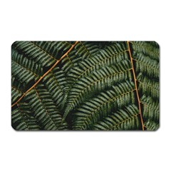 Green Leaves Photo Magnet (rectangular)