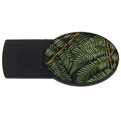 Green Leaves Photo Usb Flash Drive Oval (2 Gb)