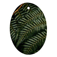 Green Leaves Photo Oval Ornament (two Sides)