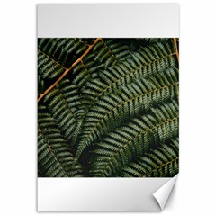Green Leaves Photo Canvas 12  X 18