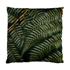 Green Leaves Photo Standard Cushion Case (two Sides)