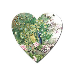 Peafowl Peacock Feather Beautiful Heart Magnet by Sudhe