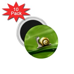 Snail Drops Rain Drawing Green 1 75  Magnets (10 Pack)