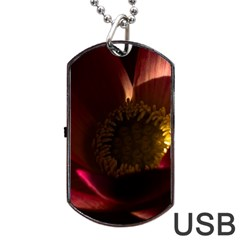 Zappwaits Water Lily Dog Tag Usb Flash (two Sides)
