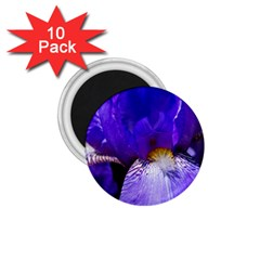 Zappwaits Flower 1.75  Magnets (10 pack)