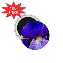 Zappwaits Flower 1.75  Magnets (100 pack)