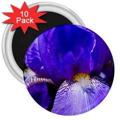 Zappwaits Flower 3  Magnets (10 pack)