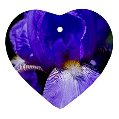 Zappwaits Flower Heart Ornament (Two Sides)
