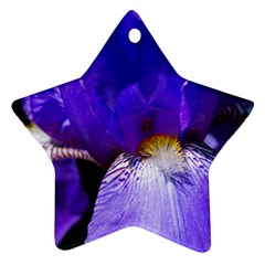 Zappwaits Flower Star Ornament (Two Sides)