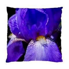 Zappwaits Flower Standard Cushion Case (Two Sides)