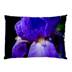 Zappwaits Flower Pillow Case (Two Sides)