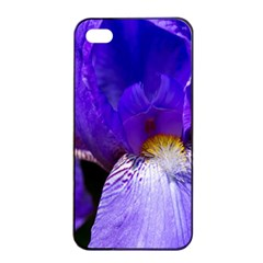 Zappwaits Flower iPhone 4/4s Seamless Case (Black)