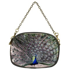 Peacock Bird Feather Plumage Green Chain Purse (two Sides)