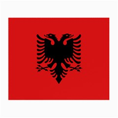 Albania Flag Small Glasses Cloth (2 Sides) by FlagGallery