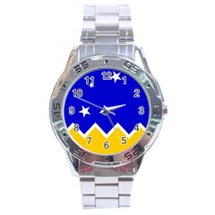 Flag Of Magallanes Region, Chile Stainless Steel Analogue Watch by abbeyz71