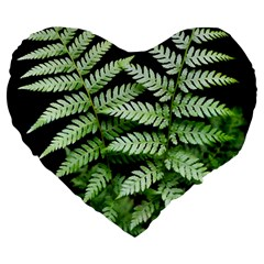 Fern Plant Leaf Green Botany Large 19  Premium Flano Heart Shape Cushions