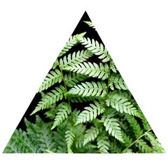 Fern Plant Leaf Green Botany Wooden Puzzle Triangle