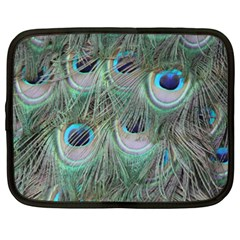 Peacock Feather Pattern Plumage Netbook Case (xxl)