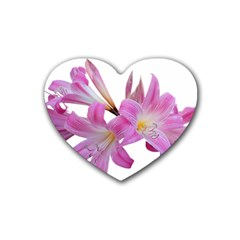 Lily Belladonna Easter Lily Heart Coaster (4 Pack)