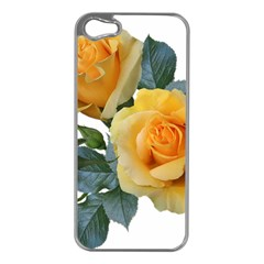 Roses Yellow Flowers Fragrant Iphone 5 Case (silver)