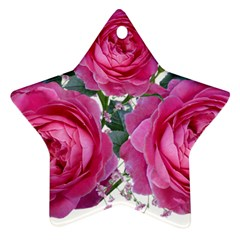 Roses Gypsophila Flowers Fragrant Star Ornament (two Sides)