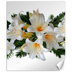 Lilies Belladonna White Flowers Canvas 8  X 10