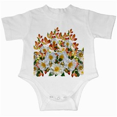 Flowers Roses Leaves Autumn Infant Creepers