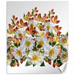 Flowers Roses Leaves Autumn Canvas 20  X 24