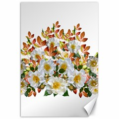 Flowers Roses Leaves Autumn Canvas 20  X 30