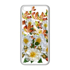 Flowers Roses Leaves Autumn Iphone 5c Seamless Case (white)