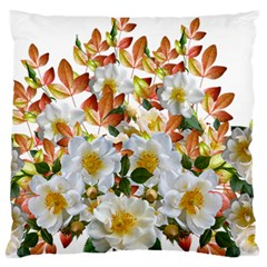 Flowers Roses Leaves Autumn Large Flano Cushion Case (two Sides)
