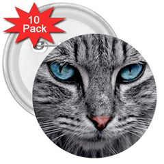 Cat Animal Cat Portrait Mackerel 3  Buttons (10 Pack)