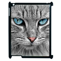 Cat Animal Cat Portrait Mackerel Apple Ipad 2 Case (black)