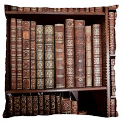 Library Books Knowledge Large Cushion Case (one Side)