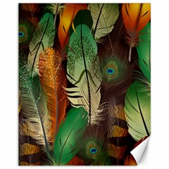 Feathers Realistic Pattern Canvas 11  X 14