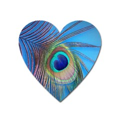 Nature Bird Wing Texture Animal Male Wildlife Decoration Pattern Line Green Color Blue Colorful Heart Magnet by Vaneshart