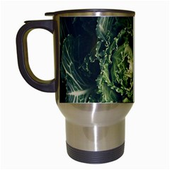Plant Leaf Flower Green Produce Vegetable Botany Flora Cabbage Macro Photography Flowering Plant Travel Mugs (white)