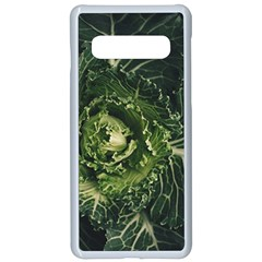 Plant Leaf Flower Green Produce Vegetable Botany Flora Cabbage Macro Photography Flowering Plant Samsung Galaxy S10 Seamless Case(white)
