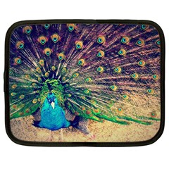 Bird Biology Fauna Material Chile Peacock Plumage Feathers Symmetry Vertebrate Peafowl Netbook Case (large) by Vaneshart