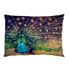 Bird Biology Fauna Material Chile Peacock Plumage Feathers Symmetry Vertebrate Peafowl Pillow Case (two Sides) by Vaneshart