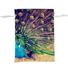 Bird Biology Fauna Material Chile Peacock Plumage Feathers Symmetry Vertebrate Peafowl  Lightweight Drawstring Pouch (xl) by Vaneshart