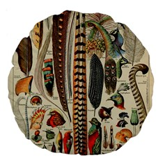 Feathers Birds Vintage Art Large 18  Premium Flano Round Cushions