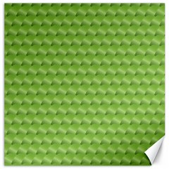 Green Pattern Ornate Background Canvas 12  X 12